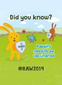 Rabbit awareness week 2019